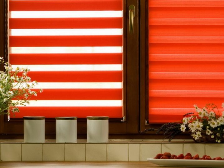 Рулонные шторы «День-ночь»